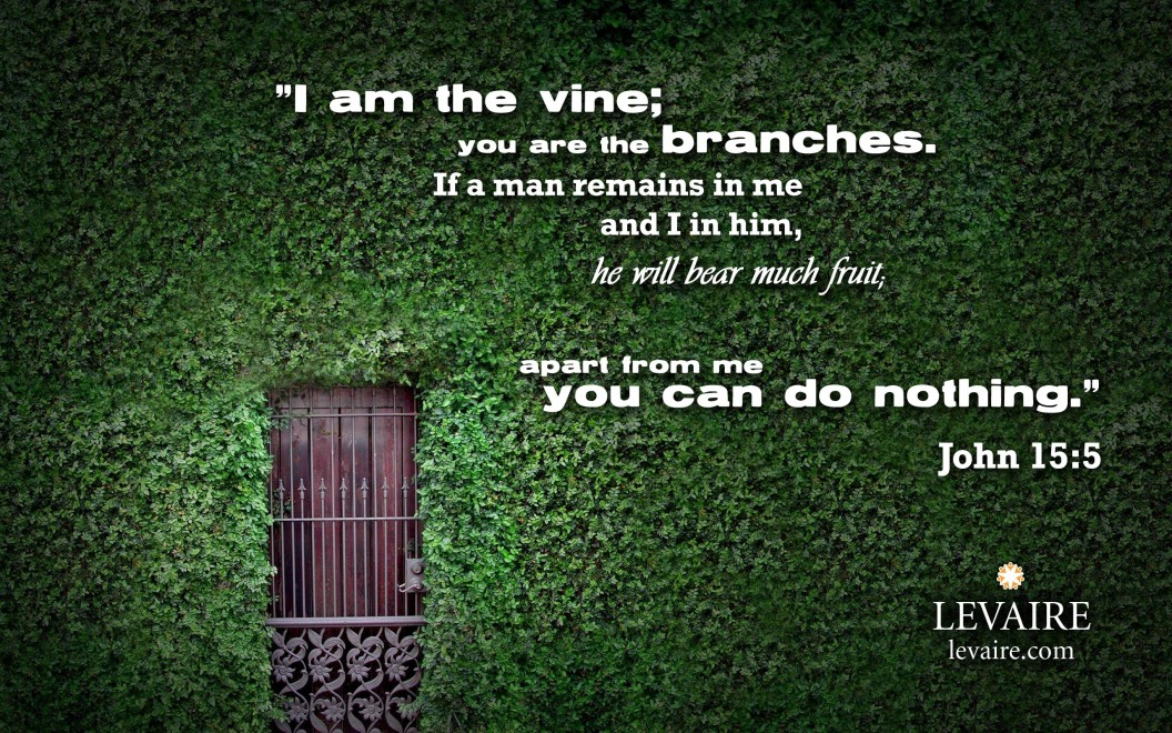 Apart from Me you can do nothing - John 15 5