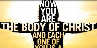 you are the body