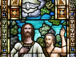 priesthood of the believer