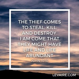 John 10:10 the thief comes to steal kill and destroy